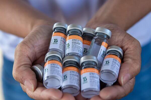 fim da fila para sommelier de vacina